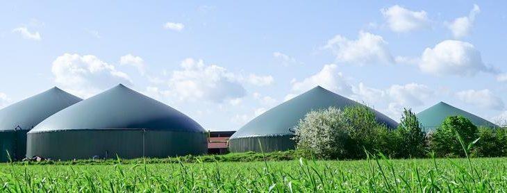 Flex-Erträge für Biogasanlagen im Höhenflug