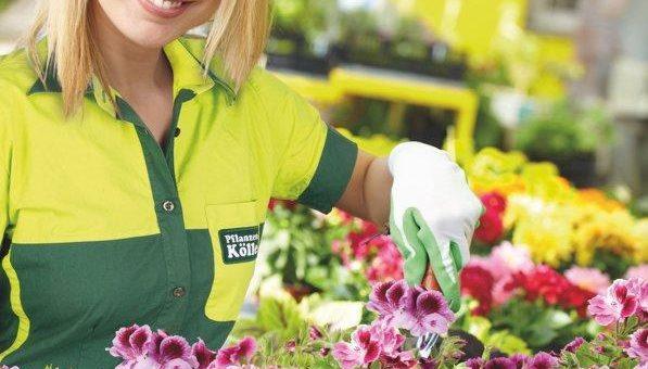 Gratis-Pflanzaktion bei Pflanzen-Kölle: Lassen Sie Terrasse und Balkon wieder in neuer Frische erstrahlen