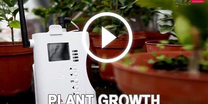Pflanzenwachstum kabellos überwachen
