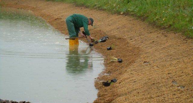 Natürlicher Erosionsschutz verhindert folgenschwere Schäden