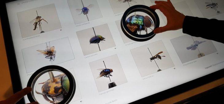 Neuartige Speziallupe für Multitouch-Displays