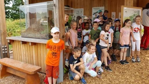 Ameisenschaugehege im Wildpark Neuhaus der Niedersächsischen Landesforsten eröffnet