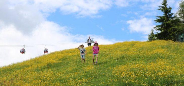 Drachenstarke Abenteuer: Familienurlaub in der Wildschönau