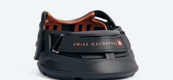 Schweizer Fertigungsspezialist mit Pferdestärken im Rennen