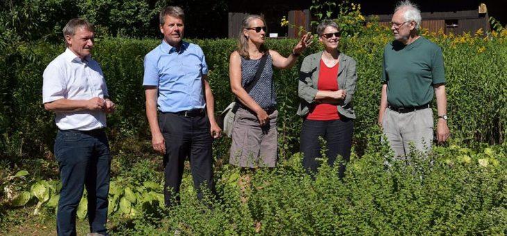 Waldmodule, Imkern im Kindergarten und Wasserexperimente im ehemaligen Kleingartengebiet
