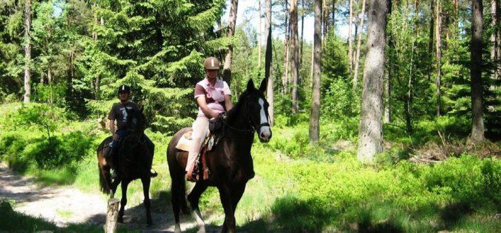 Mitmachen bei den Deutschen Waldtagen