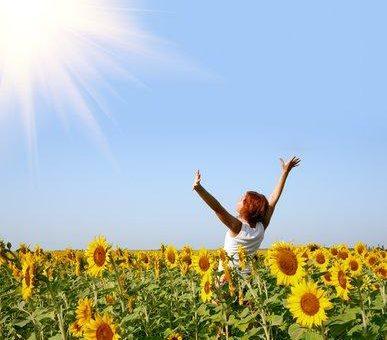 Sonne ist Energie – Photovoltaik – Solaranlagen – mit anschlussfertigen Photovoltaik-Modulen SunPremium