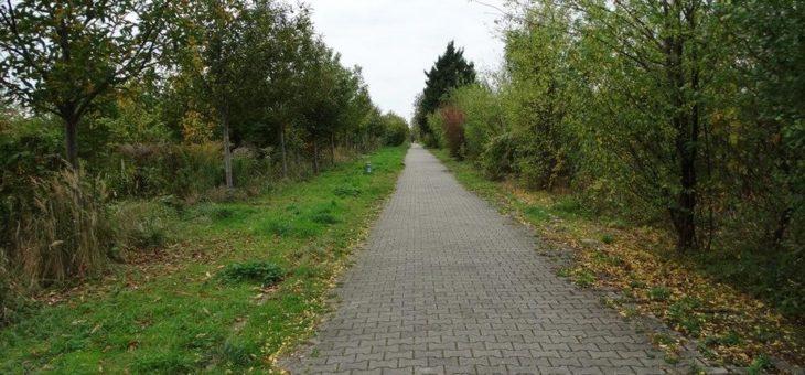 """""""Urbane Wälder"""": neue Waldformen bereichern die Stadt"""