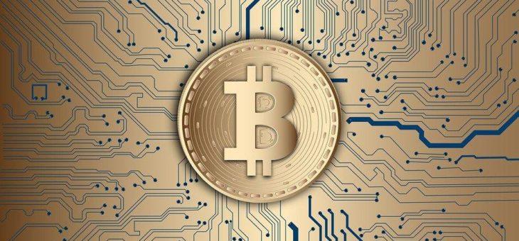 Bitcoin: Zwei Pizzas für 56 Millionen EURO