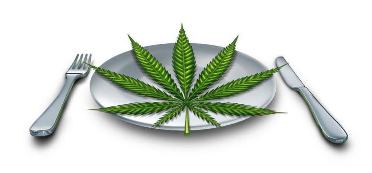 Chemesis steigt auch in den Markt für Cannabis-Lebensmittel ein!