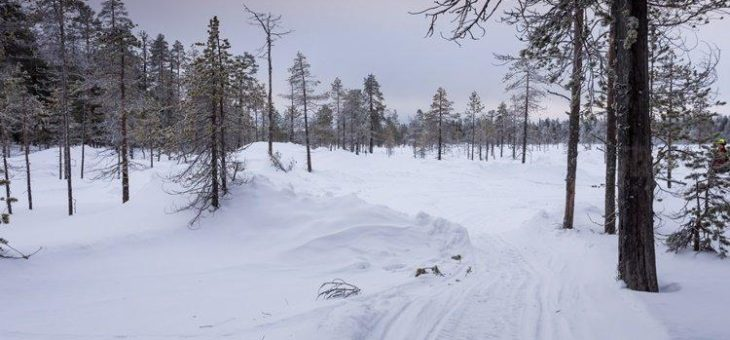 Mawson Resources: Große Spannung in Finnland