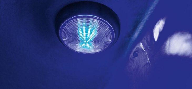 Neue LED-Innenbeleuchtung in der Farbe blau in Böckmann Pferdeanhängern