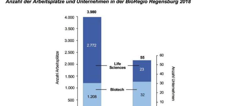 Geschäftsbericht 20 Jahre BioPark Regensburg