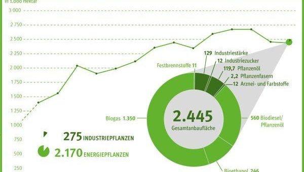 Anbau nachwachsender Rohstoffe in Deutschland: Rapsanbau für Biodiesel geht zurück