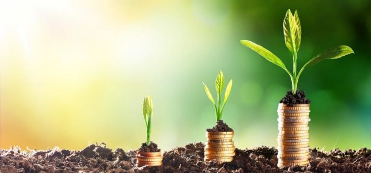 Die Lebensversicherung – Von der risikolosen Zinsanlage zur zinslosen Risikoanlage