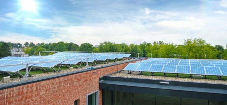 Photovoltaik und Gründach – eine zukunftsweisende Kombination
