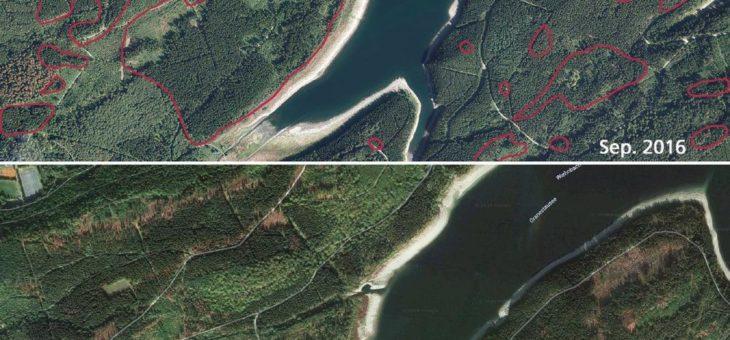 Niedersächsische Landesforsten – Wiederaufforstung beginnt mit Luftbildern