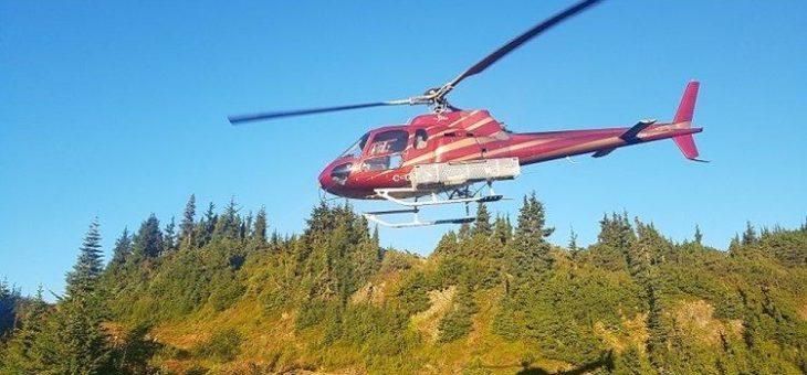 Skeena Resources: Bis zu 1.380 Gramm Gold pro Tonne auf Eskay Creek!