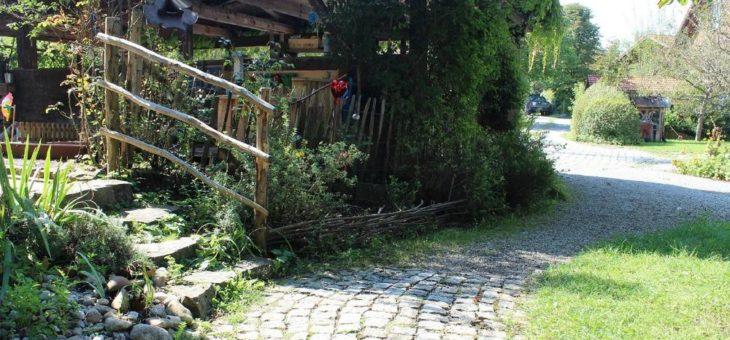 Sinnvoll und zeitgemäß: naturnahe Gärten und Außenanlagen