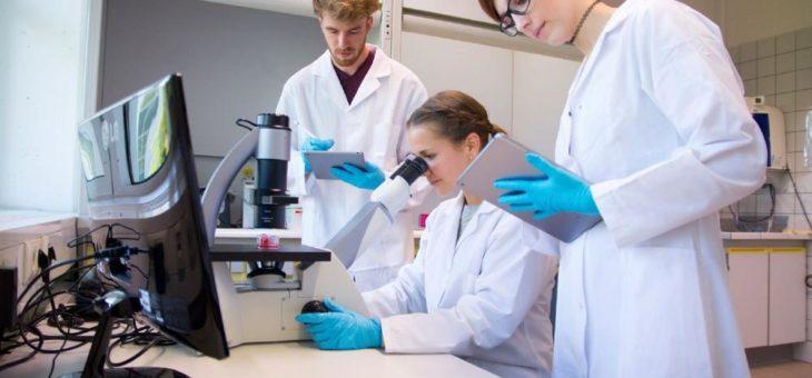Neues Fernstudienangebot: Medizinische Biotechnologie (B. Sc.)