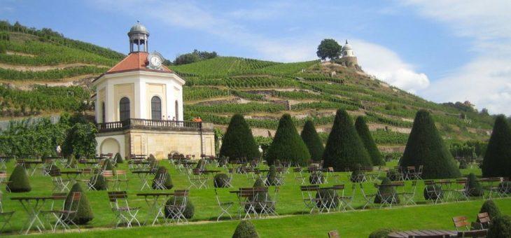 Weinreise Elbtal: Große Entdeckertour durch Deutschlands kleinste Weinregion