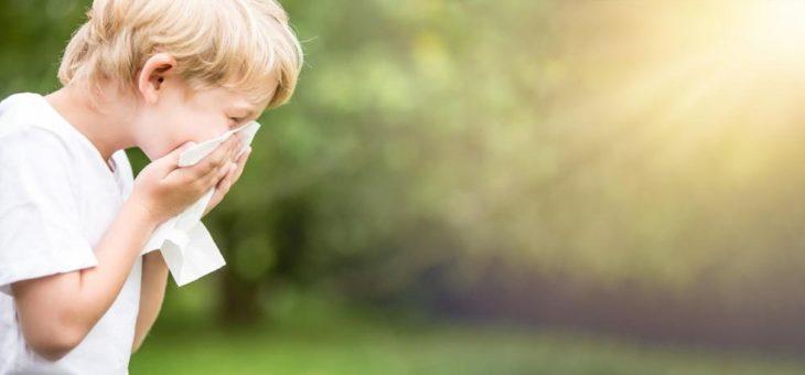 "Kurzkettige Fettsäuren als ""Schutzschild"" gegen Allergien?"
