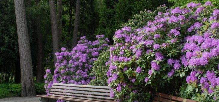 Botanischer Garten München-Nymphenburg weiterhin geschlossen