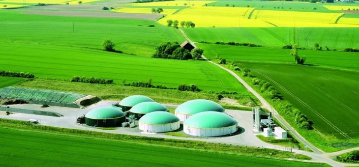 Absatz- und Preiseinbrüche in der Biomethanbranche