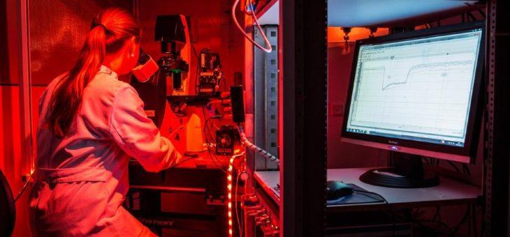 Rund 30 Millionen Euro für exzellente Forschung
