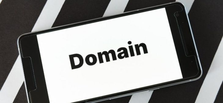 How to get my Domain back, if a Domain Squatter has registered it?