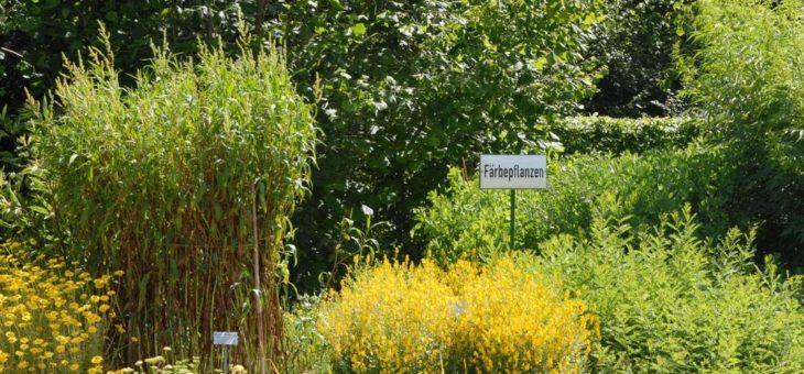 """""""Wir treiben es bunt"""" – Färbepflanzen im Botanischen Garten"""