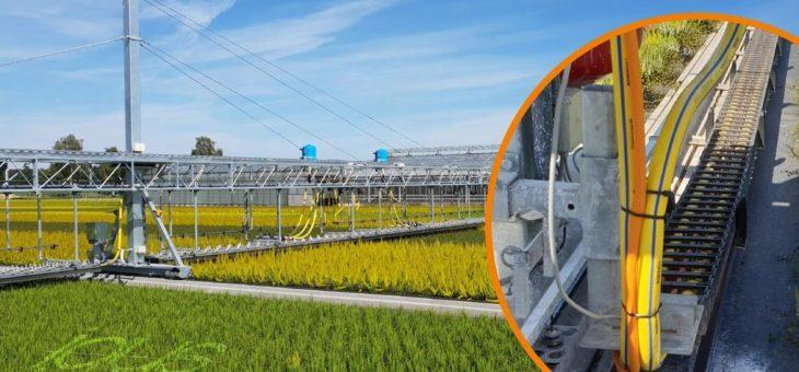 igus Rollenkette für eine gezielte Bewässerung mit Sparpotenzial