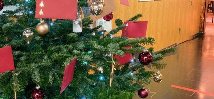 Asklepios Klinik Altona: Wunschbaum bringt Kinderaugen zum Leuchten