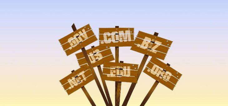 Backorder von Domains