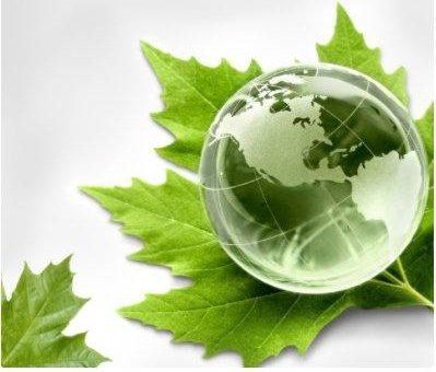 HP nominiert IT-HAUS zum Nachhaltigkeits-Partner in Deutschland