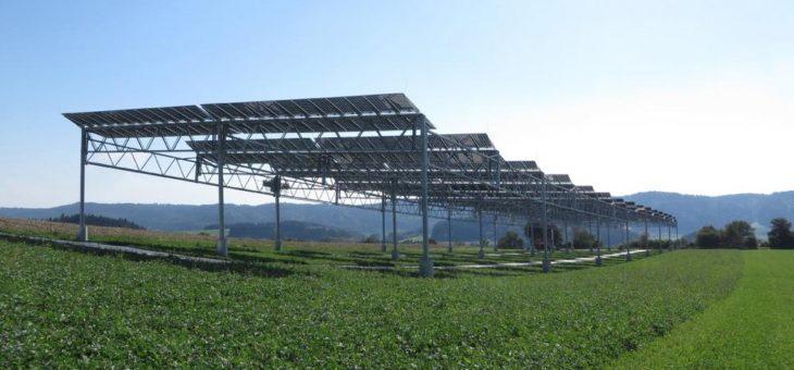 Auf Ackerflächen doppelt ernten: Leitfaden zur  Agri-Photovoltaik erschienen