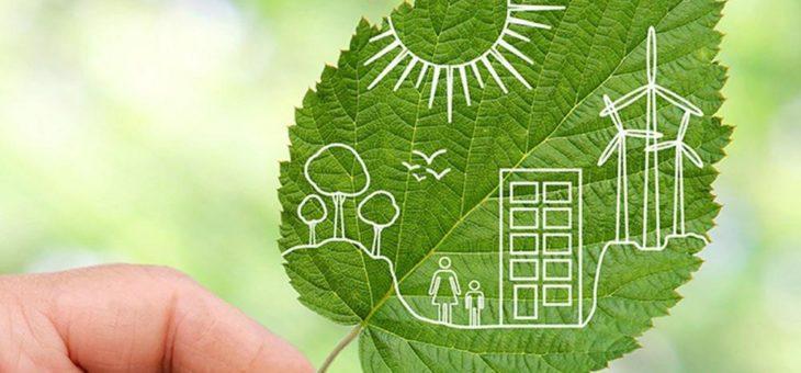 TZMO setzt Ziele für eine grünere Zukunft