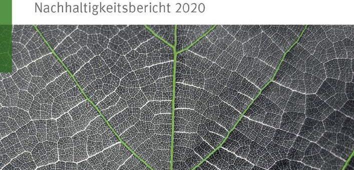 Schaeffler veröffentlicht Nachhaltigkeitsbericht 2020