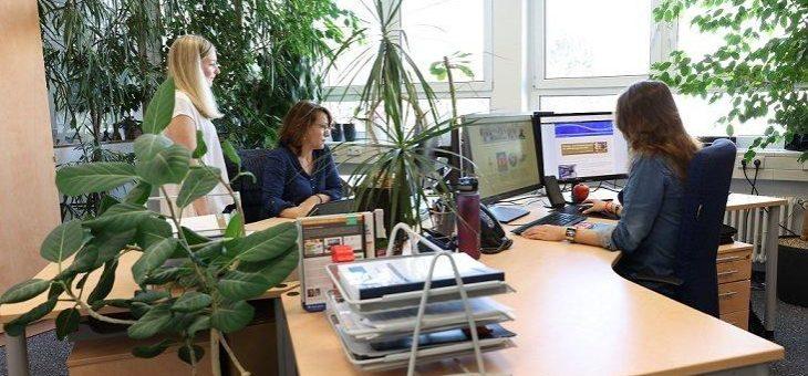 Internationaler Frauentag auch in Rastatt