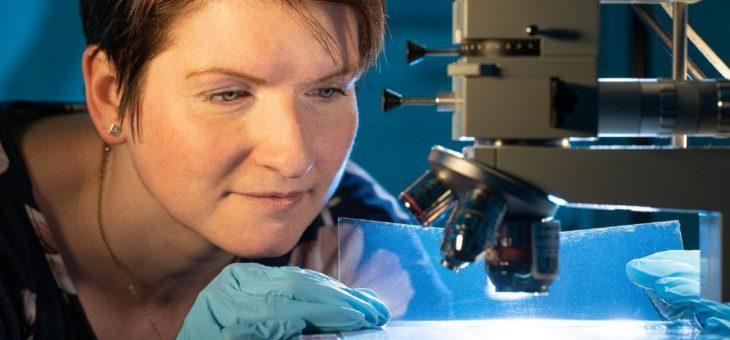 Wenige Stunden statt Wochen: Hyperspektrales Sehen beschleunigt Folienprüfung