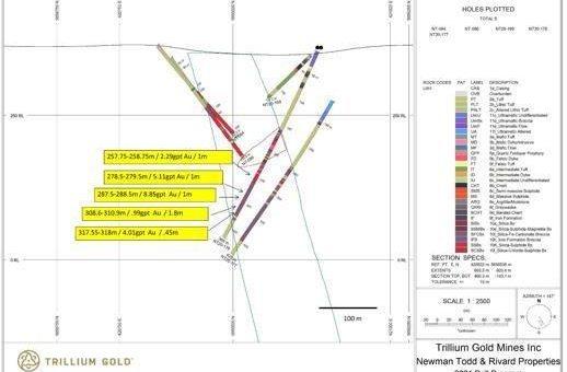 Trillium Gold meldet weitere hochgradige Goldergebnisse aus Newman Todd mit endgültigen Bohrergebnissen für 2020