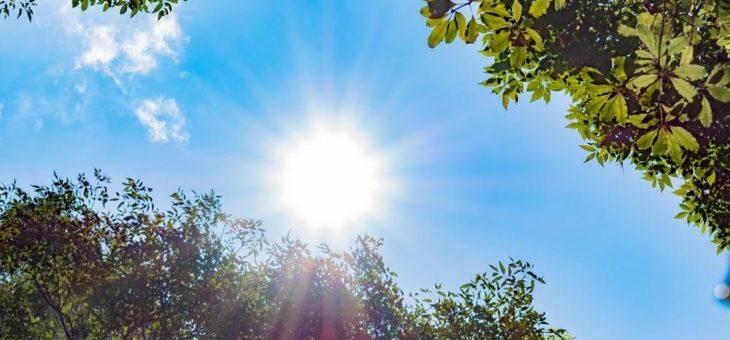 Im Sommer unbeschwert Sonne tanken
