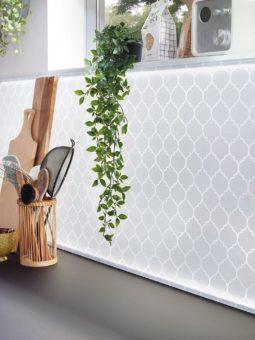 Beleuchtete Rückwände aus Glas für die Küche – echter Eyecatcher mit Motiv und Licht