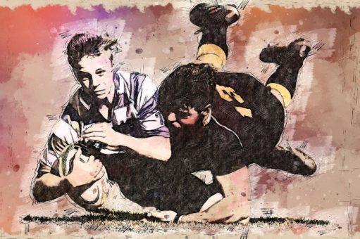 Rugby-Domains: Start im Juli